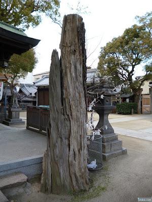 海老江八坂神社 木