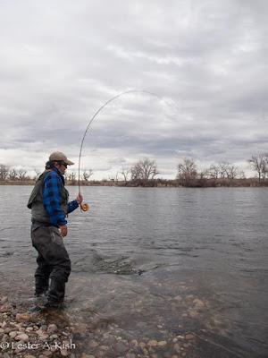 Satoshi Yamamoto, fishing, Bighorn River, Montana