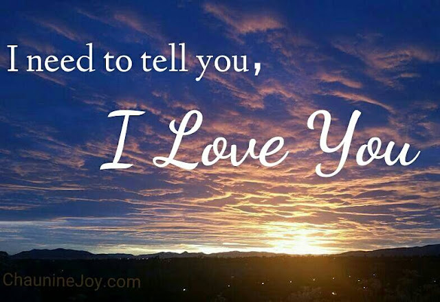 Chaunine Joy Landau - I Love You - Provo Utah Sunset