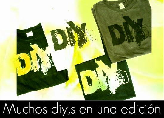 6 Diy,s Fashion Chic con Imaginacion