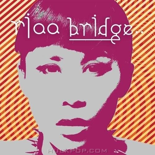 RIAA – BRIDGE