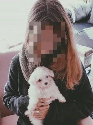 el perro maltes de terelu