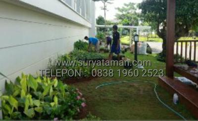 www.suruataman.com