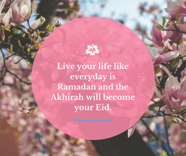Live your life like everyday is Ramadan  and the Akhirah will become your Eid. (In Sha Allah)
