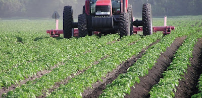 'Govt's Support To Agric Industrialisation Vital' 1