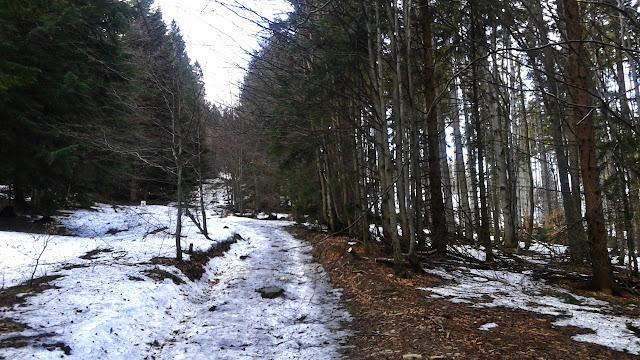 Szlak na Pilsko (Przełęcz Glinne 808 m.n.p.m.)