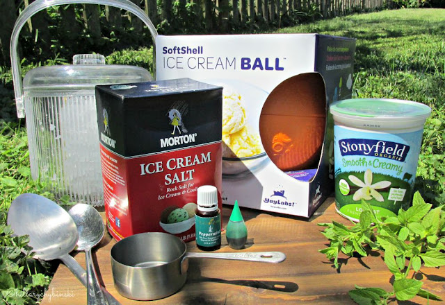 Ingredients for making frozen yogurt at home