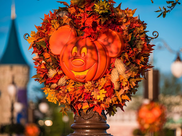The Greatest Events to Experience At Walt Disney World 🎃