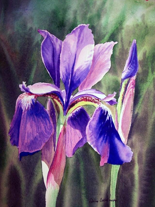 Цветы и цветочные натюрморты акварелью. Irina Sztukowski 5