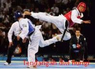 5 Jenis Teknik Dasar Taekwondo Beserta Gambar dan Video zonapelatih