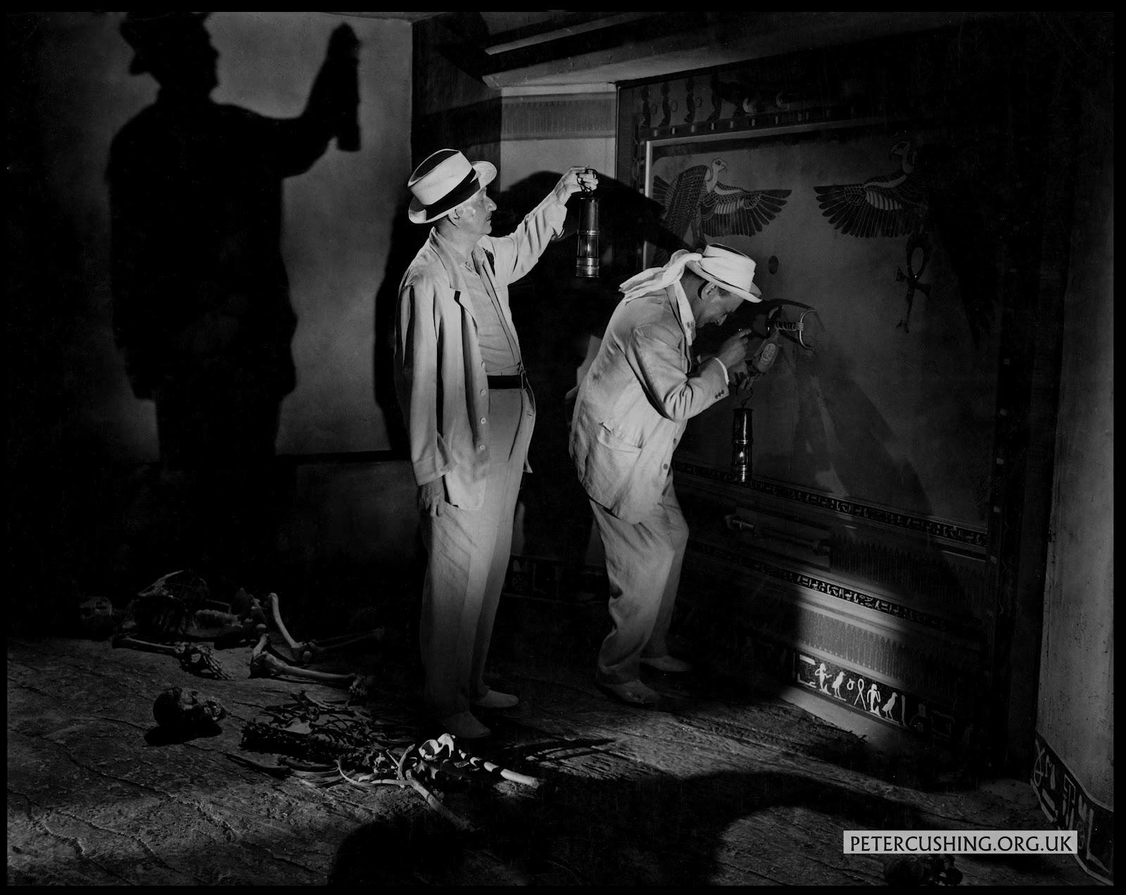 PETERCUSHINGBLOG.BLOGSPOT.COM (PCASUK): HAMMER FILMS ...