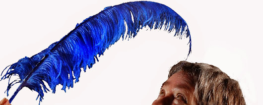 The Magical Blue Feather