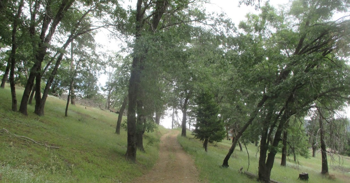 Hiking In Southern California Historic Palomar Cabin From