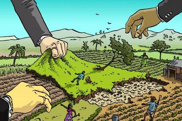 Autossustentável: Terras