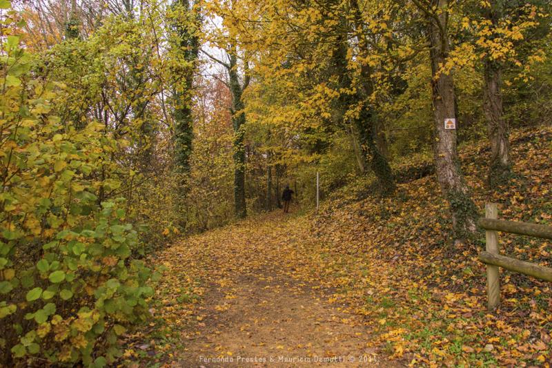 outono no castelo de malbrouck