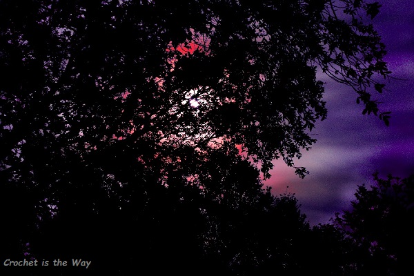 photography, photo editing, harvest moon, long exposure, night sky