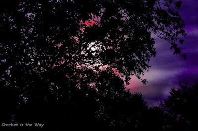 photography, photo editing, harvest moon, long exposure, night sky