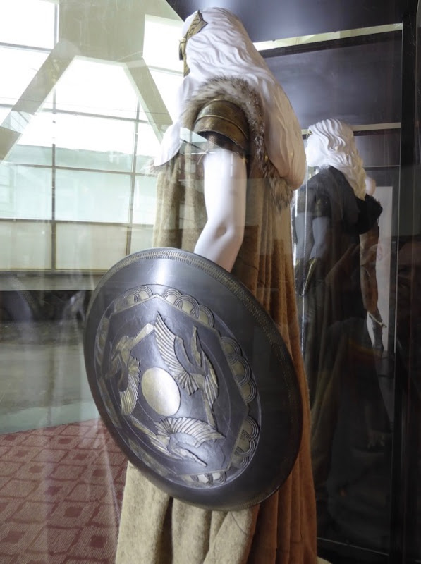 Queen Hippolyta costume shield Wonder Woman