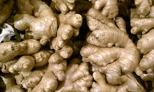 Search My Choice: Health Update: Ginger Root Kills Ovarian & Prostate Cancer Cells Better than Chemo