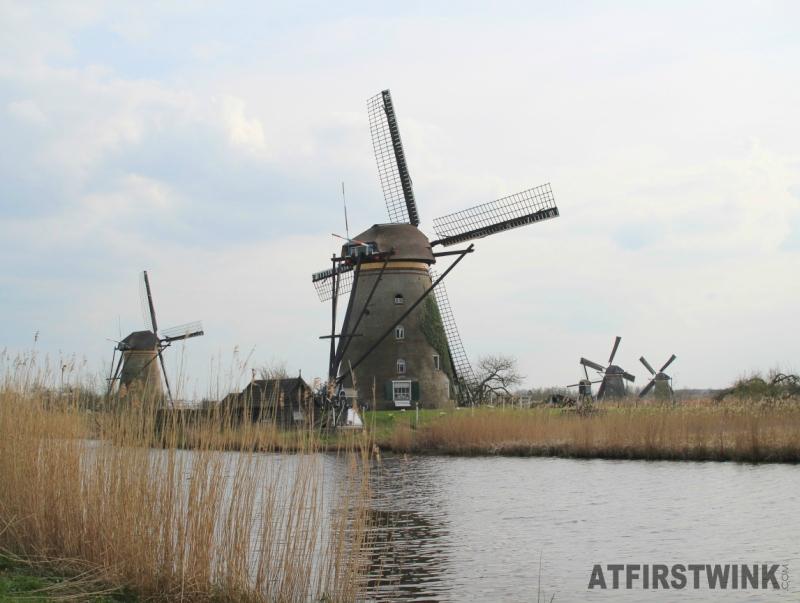 kinderdijk five windmills high grass