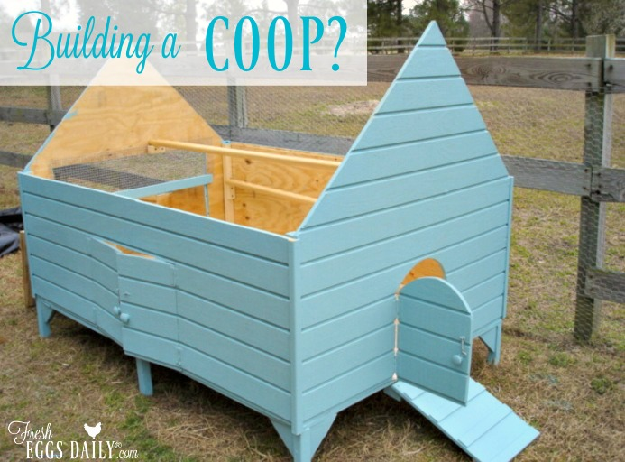 Building A Chicken Coop Some Things To Consider Fresh