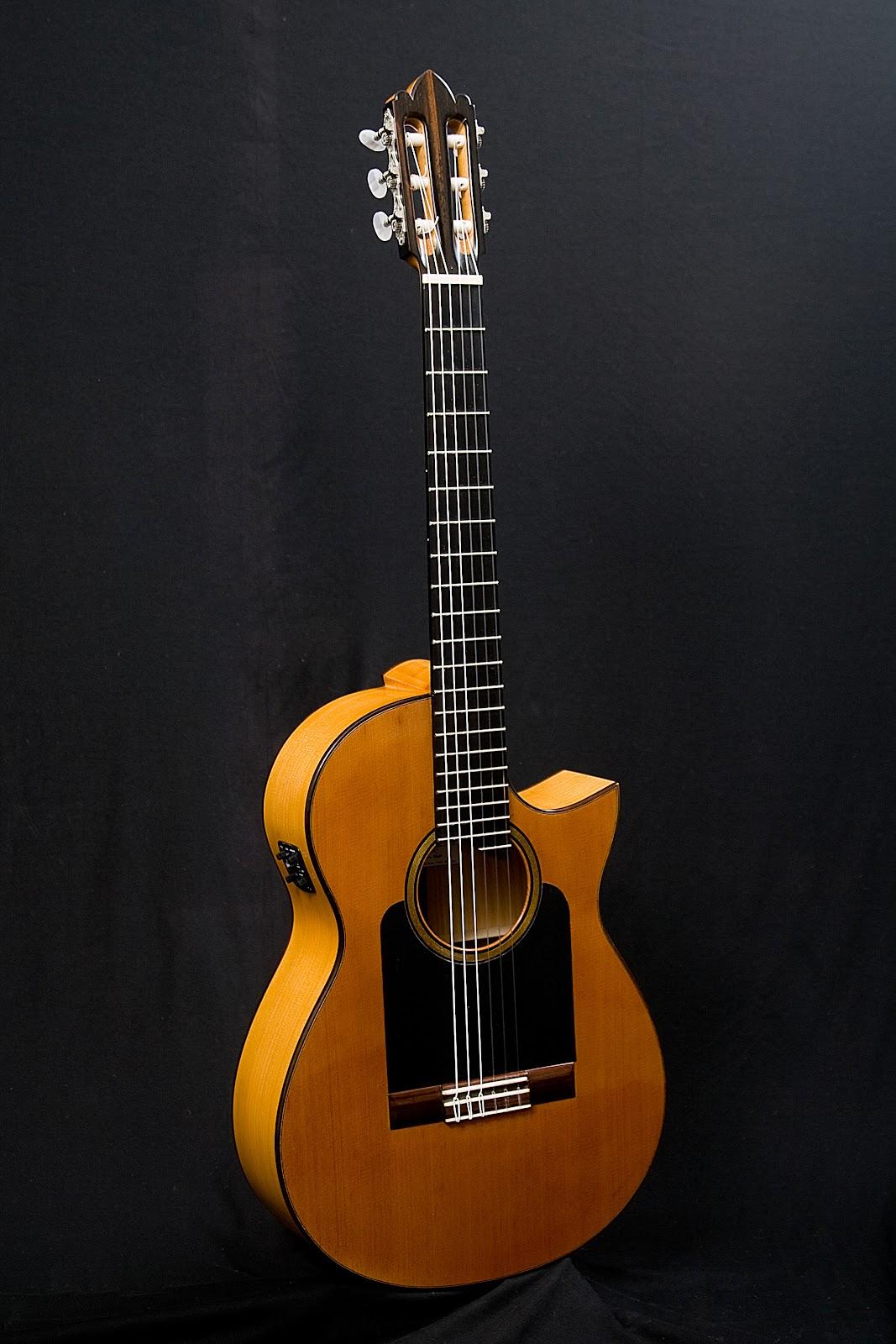 guitarras custom constru das por rodolfo cucculelli luthier trouver une guitare lectro. Black Bedroom Furniture Sets. Home Design Ideas