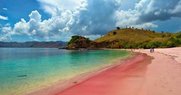 Tak Hanya Indonesia, Inilah 6 Pantai Pink Terindah Di Dunia