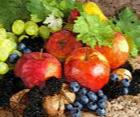 http://amajeto.com/games/amajeto_autumn_fruits/
