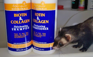 Ren Pure Biotin & Collagen THICKENING shampooing conditioner REVIEW ferret safe bath washing gentle protein