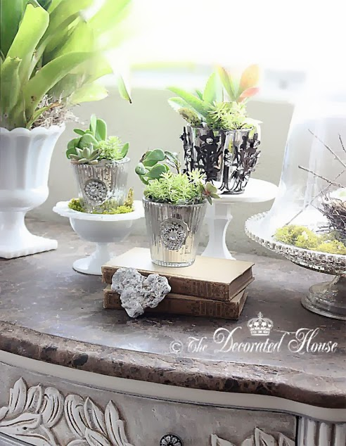 The Decorated House: ~ Decorating with Succulents & Silver