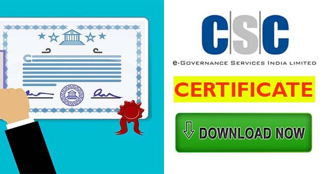 download csc certificate 2019