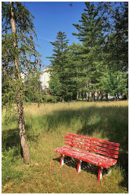 Grünanlage im Neubaugebiet der Stadt Zeitz (Zeitz-Ost)