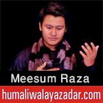 http://www.humaliwalayazadar.com/2017/09/meesum-raza-nohay-2018.html