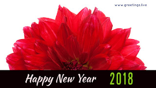 Happy New Year 2018 Greeting With red Flower