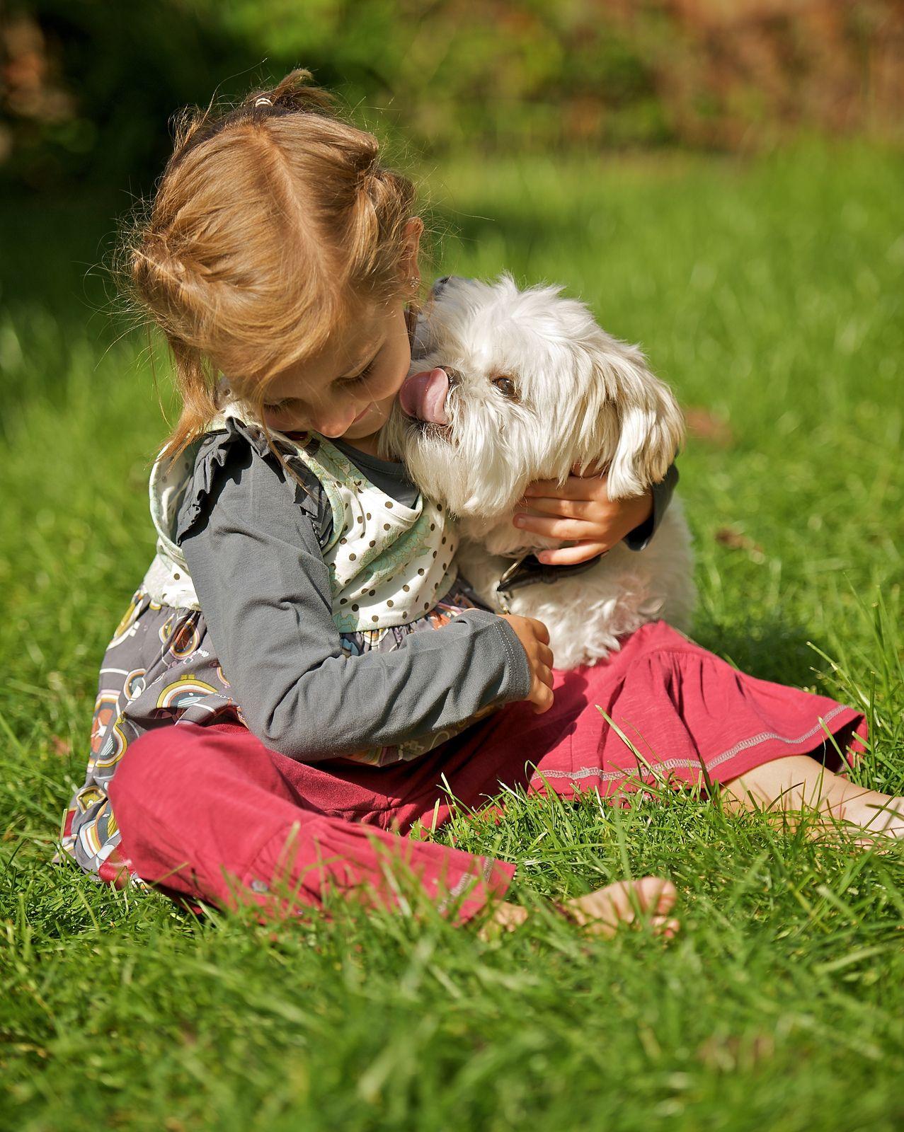 10. A Dog's Love Back