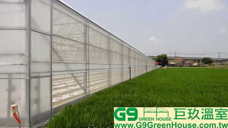 36.圓鋸鋼骨加強型溫室結構雙側邊防風桿安裝完成外觀