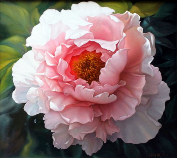 Good Witches Magickal Flowers And Herbs: Peony