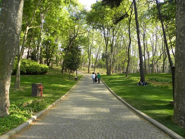 doğa, yeşillik, parklar