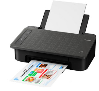 Fi printing gadget for crucial removed explanation together with borderless  Canon PIXMA TS306 Drivers Download And Review