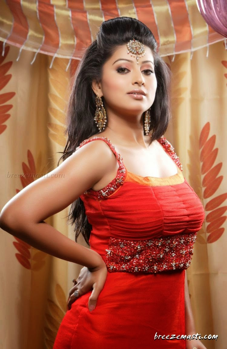 Sneha Hot Actress Ever In Tamil Film Industries - Sexy And -4088