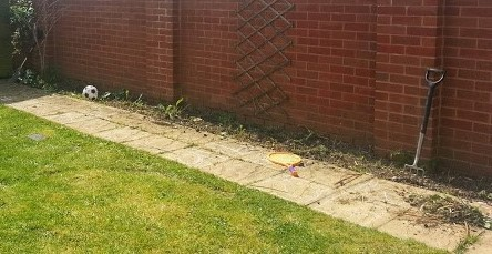 Freshly dug garden border