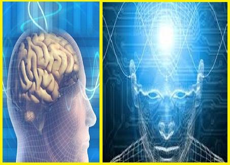 gambar macam-macam kecerdasan otak manusia yang berbeda satu sama lainya