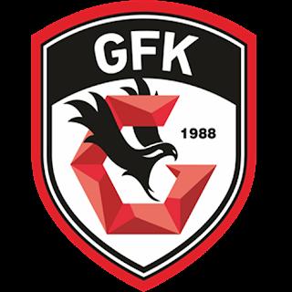 gazisehir-dls-logo