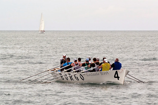 Rowers of the Borgo Cappuccini quarter, Porto Mediceo, Livorno