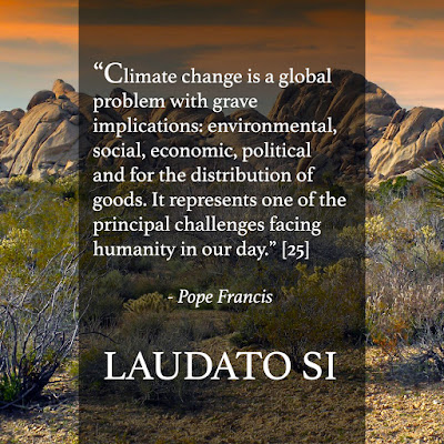 Good News for the Digital Pews: Laudato Si Thursday - Week 5