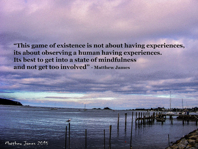 'This game of existence is not about having experiences; it's about observing a human having experiences.' - Matthew James