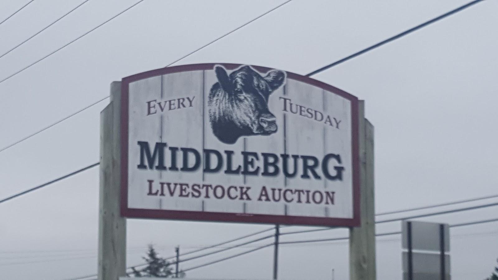 Valley Girl Views: The Middleburg Farm & Livestock Market