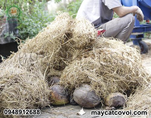Rơm rạ, vỏ dừa khô - nguyên liệu của Máy băm nghiền rơm rạ, bã mía 3A24Hp