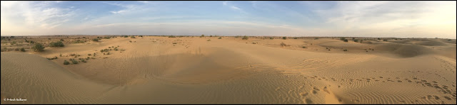 Lonely but lovely Thar Desert