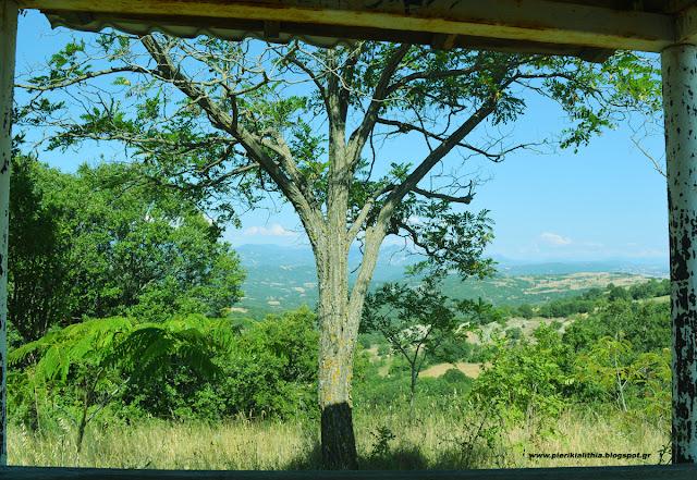 Καλημέρα Κατερίνη, καλημέρα Πιερία. Παρασκευή σήμερα 4 Αυγούστου 2017